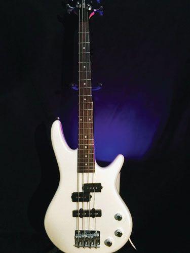 Bass Setup and Repair Kennesaw GA